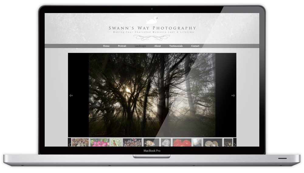 Swann's Way Photography Website Gallery